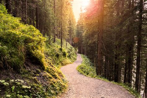 Why Getting Back to Nature is Overrated